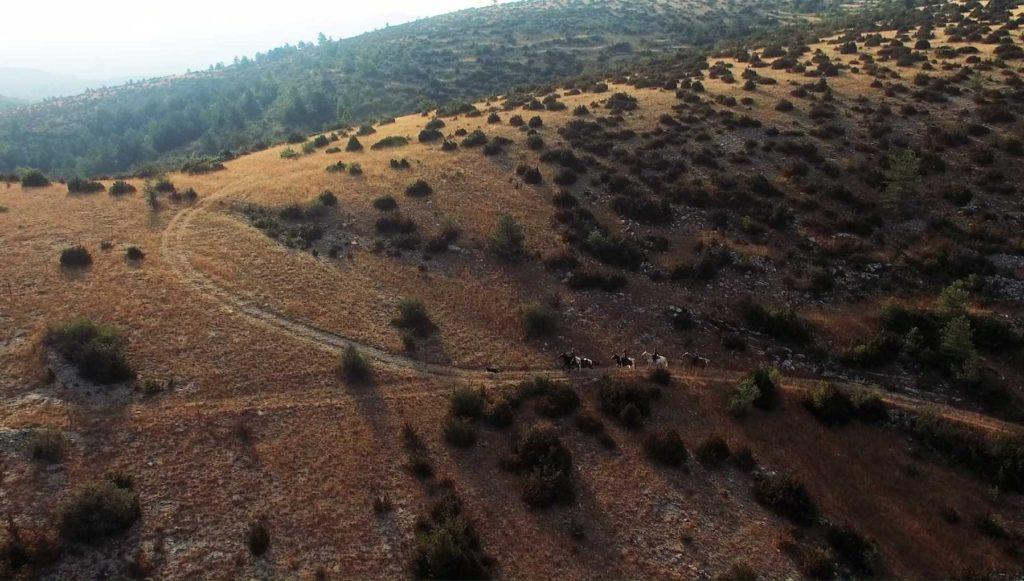 Route du Sel 2017 : louez votre cheval à Equi Larzac !